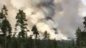 Firefighters battle blaze near Williams Lake