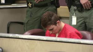 Florida school shooting suspect Nikolas Cruz pleads not guilty to 17 counts of murder