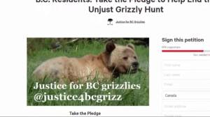 Government ban grizzly bear hunt in B.C.