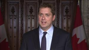 'Sad day for Canada's energy sector': Scheer blasts Liberals over Trans Mountain purchase
