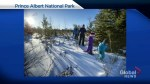 Prince Albert National Park winter festival