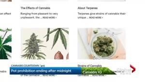 Illegal Toronto pot shops plan to shut down ahead of cannabis legalization