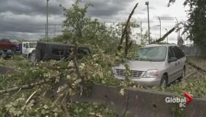 Destructive Wind Storm hits southern BC