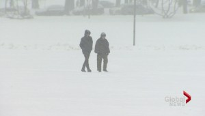 Winter storm dumps snow in Maritimes for 2nd time in 3 days