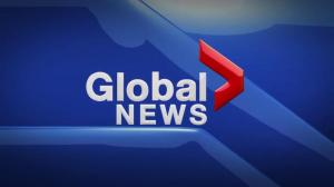 Global News at 5 Edmonton: June 4
