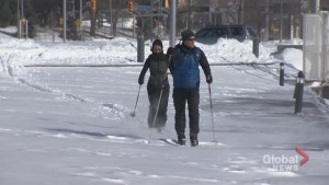 Toronto residents bust out the skis as winter storm dumps over 40 cm of snow
