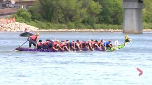 Dragon Boats taking to South Saskatchewan River in Saskatoon