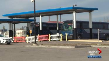 Fragmented bus service market emerges as Greyhound exits