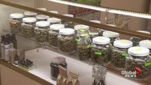 Saskatoon city council debates cannabis regulations