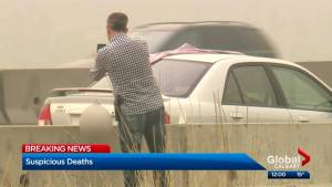 Calgary police shut down portion of Stoney Trail after multiple deaths