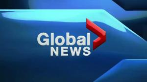 Global News at 6: August 7