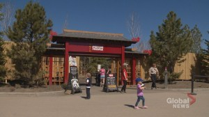 Tour of Panda Passage: An inside look at where Calgary's pandas will be living