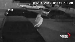 Thief seen prowling Airdrie neighbourhood for unlocked vehicles