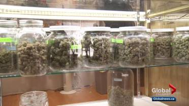 17 Alberta shops will sell cannabis on 1st day of