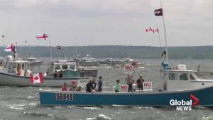 Thousands gather to protest pulp mill in Pictou