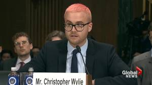 Cambridge Analytica whistleblower says company is digital 'canary in the coal mine'
