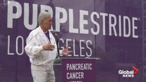 Alex Trebek proclaims 'I'm a 62-day survivor' as Jeopardy host talks about his cancer diagnosis