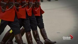 RCMP sexual harassment by the numbers