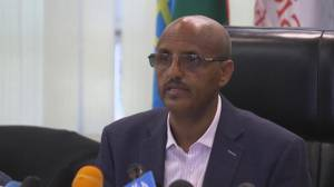 Ethiopian Airlines CEO says pilot mentioned having 'difficulty' and wanted to return