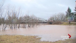 N.B. River Watch program about to begin for this year