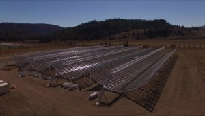 B.C. radio telescope picks up energy bursts for only second time ever