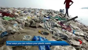 4 tips to reduce plastic pollution