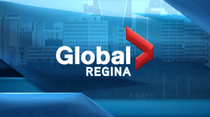 WATCH: Regina police respond to firearms call
