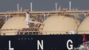 Reality check: Environmental impact of BC's LNG project