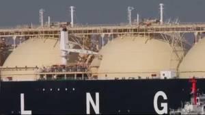 Reality check: Environmental impact of BC's LNG project