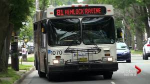 People in HRM react to Council's motion to have dedicated bus lane on Robie and Young Street