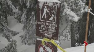 Bizarre police incident shuts down popular Mt. Seymour trail