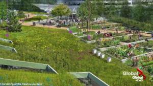 Vancouver Park Board approves innovative new rooftop park at Oakridge Centre