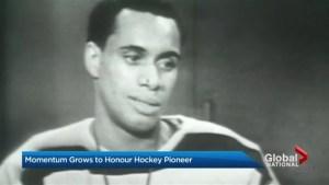 Momentum grows to honour hockey pioneer