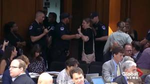 Hollywood actress, Women's March leader arrested at Kavanaugh SCOTUS confirmation hearing