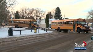 Elk Island school board eliminates half-day kindergarten
