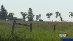 Farmers in southeastern Alberta desperately need moisture