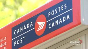 Dartmouth business owner says mail service disruption negatively impacting his bottom line