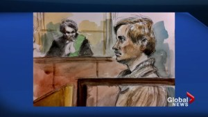 Suspect in fatal hit-and-run makes court appearance