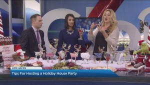 Holiday House Party Tips