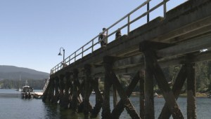 Fines for jumping in Deep Cove