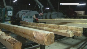 Maine governor supports New Brunswick softwood exemption