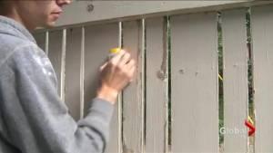'It's beautiful': Volunteer group helps to restore elderly woman's fence