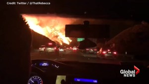 Compilation of social media videos shows how close commuters in California are driving to the wildfires