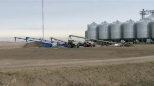 Winter drought could spell disaster for Saskatchewan farmers