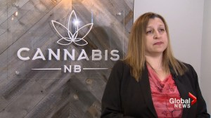 New Brunswick's cannabis retailer reports $11.7M loss in first year