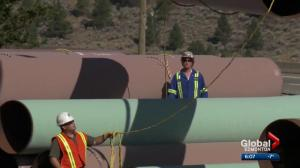 Could Energy East pipeline project be revived?