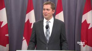 Scheer doesn't anticipate any more MPs will quit Conservative Party following Bernier departure