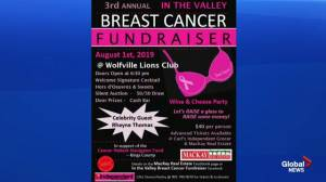 Valley Breast Cancer Fundraiser