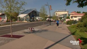 Calgary businesses wonder if pedestrian-friendly road near Chinook Centre is worth the trouble