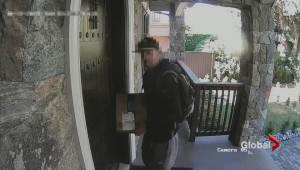 Avoiding parcel thefts